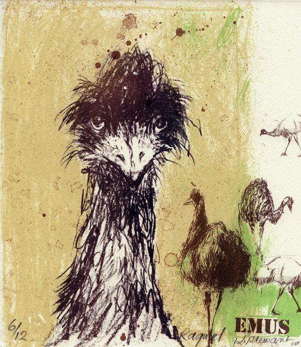 wie alt werden emus